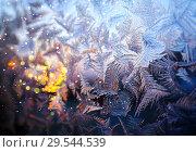 Купить «морозный узор на стекле», фото № 29544539, снято 20 января 2019 г. (c) ElenArt / Фотобанк Лори