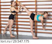 Купить «Girls training at gym», фото № 29547175, снято 10 мая 2018 г. (c) Яков Филимонов / Фотобанк Лори