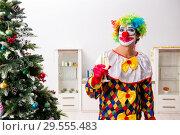 Купить «Funny clown in Christmas celebration concept», фото № 29555483, снято 20 июля 2018 г. (c) Elnur / Фотобанк Лори