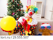 Funny clown in Christmas celebration concept. Стоковое фото, фотограф Elnur / Фотобанк Лори