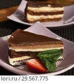 Купить «A slice of puff chocolate cake in a cafe», фото № 29567775, снято 8 марта 2018 г. (c) Володина Ольга / Фотобанк Лори