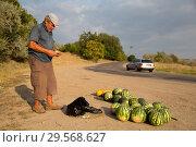 Купить «Republic of Moldova, farmer sells melons on the country road», фото № 29568627, снято 30 августа 2016 г. (c) Caro Photoagency / Фотобанк Лори