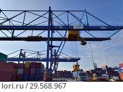 Купить «Germany, North Rhine-Westphalia - inland port in Duisburg», фото № 29568967, снято 7 марта 2018 г. (c) Caro Photoagency / Фотобанк Лори