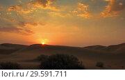 Купить «Sunrise in Tar desert, India, panorama timelapse», видеоролик № 29591711, снято 8 октября 2018 г. (c) Михаил Коханчиков / Фотобанк Лори