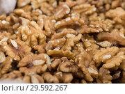 Купить «Photo of mix walnut», фото № 29592267, снято 4 сентября 2017 г. (c) Яков Филимонов / Фотобанк Лори