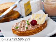 Купить «Toasted bread with rillettes and soft blue cheese», фото № 29596299, снято 23 апреля 2019 г. (c) Яков Филимонов / Фотобанк Лори