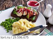 Купить «open faced hot roast turkey breast sandwich», фото № 29596675, снято 16 декабря 2018 г. (c) Oksana Zh / Фотобанк Лори