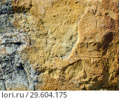 Texture of yellow,  sandstone with rare cracks. Стоковое фото, фотограф Сергей Журавлев / Фотобанк Лори