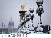 Купить «Pont Alexandre III and Invalides cathedral in snow», фото № 29608415, снято 7 февраля 2018 г. (c) Сергей Новиков / Фотобанк Лори