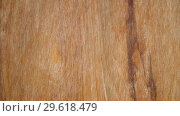 Купить «Macro video of a grunge wooden texture in which you can see the color, the wood grain», видеоролик № 29618479, снято 24 декабря 2018 г. (c) Happy Letters / Фотобанк Лори
