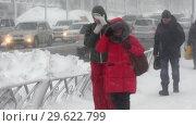 Купить «Люди идут по пешеходной дорожке во время зимнего циклона», видеоролик № 29622799, снято 28 декабря 2018 г. (c) А. А. Пирагис / Фотобанк Лори