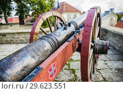 Купить «Replica cannon 'Red Lion' at the front of Maiden' tower, Danish King's Garden. Tallinn, Harju County, Estonia, Baltic states, Europe.», фото № 29623551, снято 31 августа 2018 г. (c) age Fotostock / Фотобанк Лори
