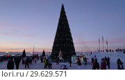 Новогодняя елка в городе Петропавловске-Камчатском, вечерний вид (2019 год). Редакционное видео, видеограф А. А. Пирагис / Фотобанк Лори