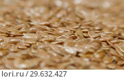 Купить «Pile of flax seeds on rotating table, macro view, healthy food», видеоролик № 29632427, снято 9 июля 2020 г. (c) Dzmitry Astapkovich / Фотобанк Лори
