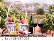 Купить «glass of red wine ripe grapes and picnic basket in vineyard», фото № 29637635, снято 11 сентября 2017 г. (c) Татьяна Яцевич / Фотобанк Лори