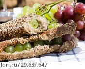 Купить «sandwich with green grapes on table in vineyard», фото № 29637647, снято 11 сентября 2017 г. (c) Татьяна Яцевич / Фотобанк Лори