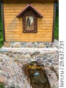 Купить «The holy spring of St. Macarius near the village of Karavaitsevo, Russia.», фото № 29637731, снято 11 июня 2018 г. (c) Валерий Смирнов / Фотобанк Лори