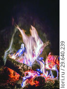 Купить «Close-up of a burning beautiful bonfire on a black night background, burning glowing logs,», фото № 29640239, снято 3 сентября 2018 г. (c) Акиньшин Владимир / Фотобанк Лори