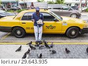 Купить «Florida, Miami Beach, Black, man, taxi cab driver feeding pigeons,», фото № 29643935, снято 9 декабря 2018 г. (c) age Fotostock / Фотобанк Лори