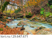 Купить «Wooden old bridge over the river in the gorge, picturesque landscape in the autumn forest in the mountains, the nature of Crimea, Russia», фото № 29647671, снято 9 ноября 2017 г. (c) Константин Лабунский / Фотобанк Лори