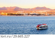 Мексика. Кабо-Сан-Лукас (исп. Cabo San Lucas) (2016 год). Редакционное фото, фотограф Галина Савина / Фотобанк Лори