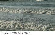Купить «Waves», видеоролик № 29667267, снято 25 июня 2019 г. (c) Wavebreak Media / Фотобанк Лори