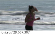 Купить «Woman on Beach Jogging», видеоролик № 29667307, снято 22 августа 2019 г. (c) Wavebreak Media / Фотобанк Лори