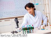 Купить «Young chemist working in the lab», фото № 29675051, снято 19 октября 2018 г. (c) Elnur / Фотобанк Лори