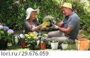 Aged couple gardening together. Стоковое видео, агентство Wavebreak Media / Фотобанк Лори