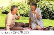Купить «Couple on a picnic having a glass of wine », видеоролик № 29678335, снято 5 ноября 2010 г. (c) Wavebreak Media / Фотобанк Лори