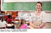 Купить «Smiling teacher standing upright», видеоролик № 29678651, снято 5 ноября 2011 г. (c) Wavebreak Media / Фотобанк Лори