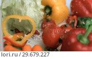 Купить «Tomato falling down in super slow motion», видеоролик № 29679227, снято 26 января 2012 г. (c) Wavebreak Media / Фотобанк Лори