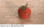Купить «Water raining on tomato in super slow motion», видеоролик № 29679279, снято 26 января 2012 г. (c) Wavebreak Media / Фотобанк Лори