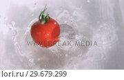 Купить «Tomato falling into water in super slow motion», видеоролик № 29679299, снято 26 января 2012 г. (c) Wavebreak Media / Фотобанк Лори