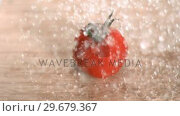 Купить «Water raining on tomato in super slow motion», видеоролик № 29679367, снято 26 января 2012 г. (c) Wavebreak Media / Фотобанк Лори