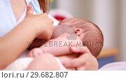 Mother breastfeeding a new born. Стоковое видео, агентство Wavebreak Media / Фотобанк Лори