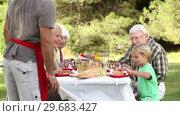 Купить «Father serving food to son at picnic table», видеоролик № 29683427, снято 16 октября 2012 г. (c) Wavebreak Media / Фотобанк Лори