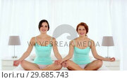 Купить «Gleeful attractive women meditating sitting in lotus position », видеоролик № 29685743, снято 16 августа 2013 г. (c) Wavebreak Media / Фотобанк Лори
