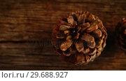 Купить «Pine cones on wooden plank», видеоролик № 29688927, снято 30 августа 2016 г. (c) Wavebreak Media / Фотобанк Лори