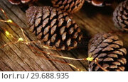 Купить «Pine cones with christmas lights on wooden plank», видеоролик № 29688935, снято 30 августа 2016 г. (c) Wavebreak Media / Фотобанк Лори