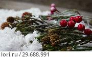 Купить «Pine cone and red cherries with fake snow», видеоролик № 29688991, снято 30 августа 2016 г. (c) Wavebreak Media / Фотобанк Лори
