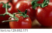 Купить «Close-up of fresh cherry tomatoes», видеоролик № 29692171, снято 12 августа 2016 г. (c) Wavebreak Media / Фотобанк Лори