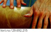 Купить «Mid-section of craftswoman spreading sheet of leather on work tool», видеоролик № 29692215, снято 29 сентября 2016 г. (c) Wavebreak Media / Фотобанк Лори