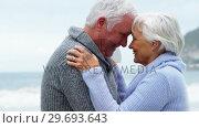 Купить «Happy senior couple embracing face to face», видеоролик № 29693643, снято 29 сентября 2016 г. (c) Wavebreak Media / Фотобанк Лори