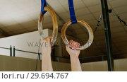 Купить «Gymnast practicing with ring row», видеоролик № 29694767, снято 14 сентября 2016 г. (c) Wavebreak Media / Фотобанк Лори