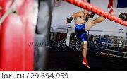 Купить «Boxer performing a boxing stance», видеоролик № 29694959, снято 8 сентября 2016 г. (c) Wavebreak Media / Фотобанк Лори