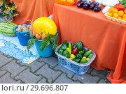 Купить «Russia, Khabarovsk, August 18, 2018: Exhibition of Agricultural Products at Harvest Festival», фото № 29696807, снято 18 августа 2018 г. (c) Катерина Белякина / Фотобанк Лори
