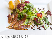 Купить «Vegetable salad with smoked eel. Japanese food», фото № 29699459, снято 5 июля 2010 г. (c) Gagara / Фотобанк Лори
