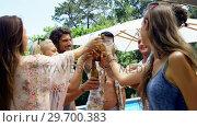 Купить «Group of happy friends toasting beer bottles and glasses at outdoors barbecue party», видеоролик № 29700383, снято 1 февраля 2017 г. (c) Wavebreak Media / Фотобанк Лори