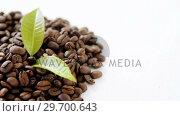 Купить «Roasted coffee beans with coffee leaves», видеоролик № 29700643, снято 6 октября 2016 г. (c) Wavebreak Media / Фотобанк Лори